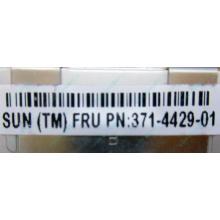 Серверная память SUN (FRU PN 371-4429-01) 4096Mb (4Gb) DDR3 ECC в Тольятти, память для сервера SUN FRU P/N 371-4429-01 (Тольятти)