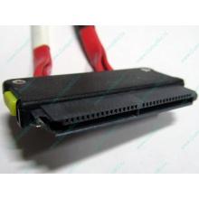 SATA-кабель для корзины HDD HP 451782-001 459190-001 для HP ML310 G5 (Тольятти)